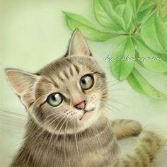 振り向きニャン Cat 2, Kitty Cats, I Love Cats, Cute Cats, Cat Illustrations, Cat Sketch, All About Cats, Cat Drawing, Animal Paintings