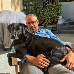 #Morgana pensa spesso di essere #Fritz #blacklab #labrador #pet #lab #rovio #relax #dog #lap