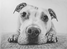 Love this ! Created in graphite and charcoal by member now1207