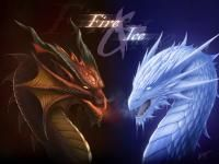 Fire and Ice Dragons. Both Western Dragons :) If I was a Dragon, I'd breath Fire ! Fire And Ice Dragons, Cool Dragons, Dragon Images, Dragon Pictures, Dragon Pics, Dragon Artwork, 3d Pictures, Fantasy Pictures, Water Dragon