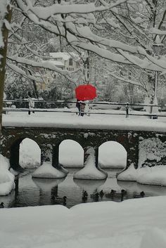 Red Umbrella, Guildford, England