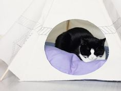 Nähanleitung: Tipi-Zelt für Haustiere nähen, Schlafplatz für Katzen und Hunde / diy sewing instruction: tipi for house pets like cats and dogs via DaWanda.com