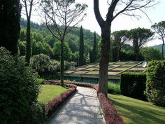 TERME SENSORIALI - Riqualificazione funzionale del Padiglione Garboli, PAOLO BODEGA ARCHITETTO | Flickr - Photo Sharing! Tree Poem, Garden Trees, Autumn Trees, Contemporary Architecture, Sidewalk, Summer, Wellness, Wine Cellars, Fall Trees