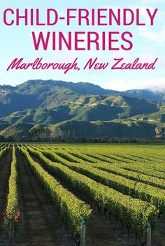 A round up of five of the best child-friendly wineries in Marlborough, New Zealand - one of the premium wine regions of the world.
