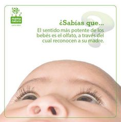 Olfato bebé - Mama Natura