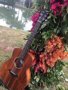 Music Instruments, Guitar, Feelings, Musical Instruments, Guitars