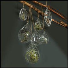 """7"""" Teardrop Hanging Bubble"""