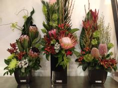 Trio of Fresh Flower Natives   Corporate Flowers by WED on Beaufort