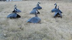 "Homemade Goose Decoys, Cheap and Easy. All you need is some dead innertubes you can get from any tireshop for free, some scrap 3/4"" plywood, and some steel rod."