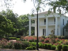 Waco, Texas  - Earle Harrison House and Pape Gardens.  This is where I had my wedding portraits done.  ;)