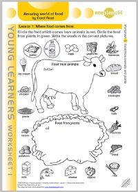A fantastic collection of 6 fully planned lessons for ESL kids about the amazing world of food.