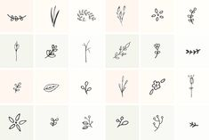 Ad: 101 Hand Drawn Botanical Elements by Maggie Molloy on Welcome to the fifth installment of my hand drawn elements collection! Filled with 101 of my very own doodles, this kit focuses solely on Little Tattoos, Mini Tattoos, Cute Tattoos, Tatoos, Stick Poke Tattoo, Stick N Poke, Tattoos For Women Small, Small Tattoos, White Finger