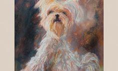 Maluję mojego psa suchymi pastelami – wideo – Monika Wiśniewska Amaviael