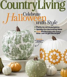 Dishfunctional Designs: I'm in Country Living Magazine!