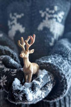 Giving Hands ~ Winter Deer