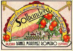 "Naranjas ""Solbandera"" Daniel Martínez Romero. Alzira."