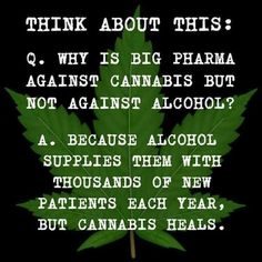 Get your medical marijuana recommendation and Easy & Quick Card at PotExam . We're the Rated online medical marijuana doctor in California. Ganja, Marijuana Facts, Endocannabinoid System, Cbd Hemp Oil, Cannabis Plant, Cannabis Oil, Oil Benefits, Health Benefits, Medical Cannabis
