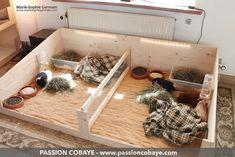 My guinea pigs' playpen - by Marie-Sophie Germain, www.passioncobaye.com