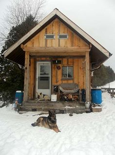 Small Barn Cabins | The cabin is insulated inside and out with isoboard, and the siding is ...
