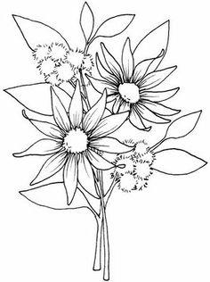 Beccys Place Flower Coloring Page