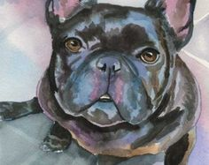 The major breeds of bulldogs are English bulldog, American bulldog, and French bulldog. The bulldog has a broad shoulder which matches with the head. French Bulldog Drawing, French Bulldog Blue, French Bulldog Puppies, French Bulldogs, Dog Paintings, Watercolor Paintings, Watercolor Paper, Bullen, Desenho Tattoo