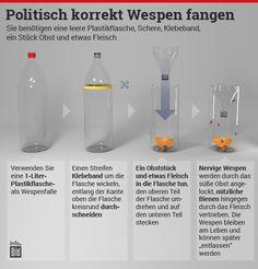 Tipps gegen die Wespen-Plage: So schlagen Sie die Biester in die Flucht http://www.bild.de/ratgeber/2015/wespen/wespen-fallen-42304112.bild.html