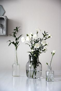 a house doesn't feel like a home to me without flowers or plants....