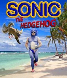 Come on SEGA it's really that simple! Komm schon, SEGA, es ist wirklich so einfach! Hedgehog Movie, Sonic The Hedgehog, Movie Memes, Funny Memes, Lmfao Funny, Hilarious Stuff, Funny Pins, Funny Videos, Movie Tv