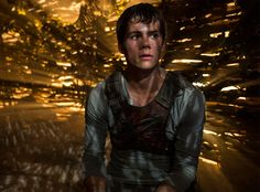 The Maze Runner Review Roundup: Can the Young Adult Movie Match the Success of The Hunger Games?  Maze Runner