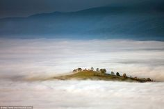 The top of a hillside emerges like an island from a sea of mist from this picture taken in...