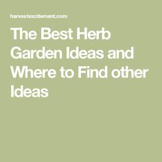 The Best Herb Garden Ideas and Where to Find other Ideas