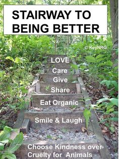 Eating Organic, Eating Raw, Life Motivation, Raw Food Recipes, Stairways, Stepping Stones, Good Things, Outdoor Decor, Stairs