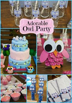 Blue and Pink Owl Party & Owl / Birthday