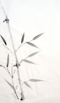 The bamboo shows vitality trough its straight lines and symbolizes integrity and strength. Sumi E Painting, Japan Painting, Chinese Painting, Chinese Art, Chinese Brush, Bamboo Tattoo, Bamboo Art, Bamboo Leaves, Beach Wallpaper