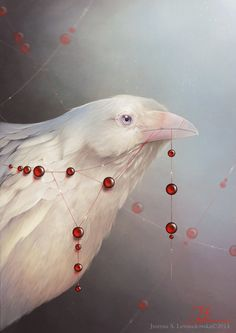 """This image is a new version of """"White Shadows: The Crow"""" which I've painted last year . I've done few fixes and now my albino crow is avail. White Shadows: The Crow Crow Art, Bird Art, Illustrations, Illustration Art, White Raven, Raven Bird, Arte Obscura, Raven Tattoo, Tier Fotos"""