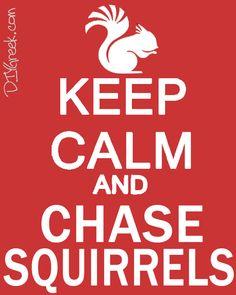 #BetaDeltaGamma  Chase squirrels http://www.greekt-shirtsthatrock.com/