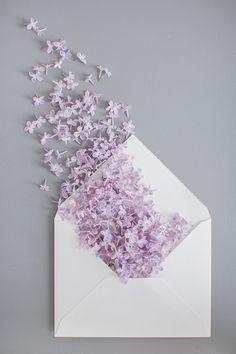 Violet Aesthetic, Lavender Aesthetic, Flower Aesthetic, Flower Phone Wallpaper, Purple Wallpaper, Iphone Wallpaper, Art Floral, Flower Backgrounds, Wallpaper Backgrounds