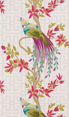 Nina Campbell Paradiso wallpaper.