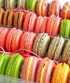 I'm a huge fan of macaron's, the colorful almond-laced French delicacy. I've always wondered why these tasty little cookies cost almost $4 a bite. A bite, truly, because I can practically swallow one