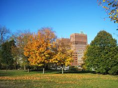 Oslo in #Norway - City hall and park - #Autumn Discover France on www.travelfranceonline.com
