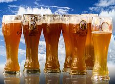 #bavaria #beer #beer glass #blue #oktoberfest #ozapft is #tradition #wheat beer #white