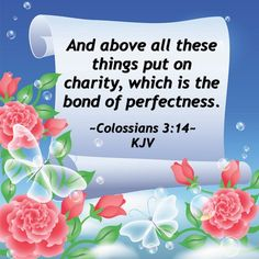 And above all these things put on charity, which is the bond of perfectness. ~Colossians 3:14~ KJV