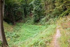 Sothy túranaplója: 2008.09.14. - VÉRTES I. ( Csákányospuszta (Birkacsárda) - Mária-szakadék - Körtvélyesi erdei temető - Vitányvár - Csákányospuszta (Birkacsárda) )