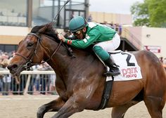 Awesome Speed  Daily Racing Form  St Preakness Stakes