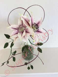 cold porcelain clematis