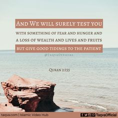 "#Allah says in the #Quran (2:155): ""And We will surely #test you with something of #fear and #hunger and a #loss of #wealth and lives and fruits, but give #good tidings to the #patient,"" . #islam #islamicquote #islamicreminder #islamic #quoteoftheday #quranquotes #quranverses #quranicquotes #muslim #muslims #ummah #prayforummah #trials #hardship #difficulttimes #hardtimes #tawakkal #tawakkul #patience #life #taqva"