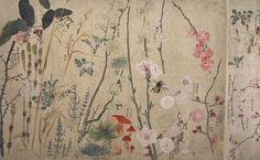 MARUYAMA Oukyo, Spring Plants from album of nature sketches