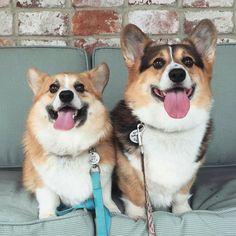 Ralph and Georgi♡