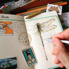 """""""Dragonflies arrived to my notebook by surprise! They are fascinating and welcome. In progress."""""""