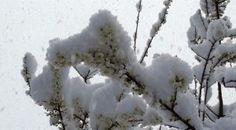 #haber #manisa #kar Manisa'ya Kar Yağdı!
